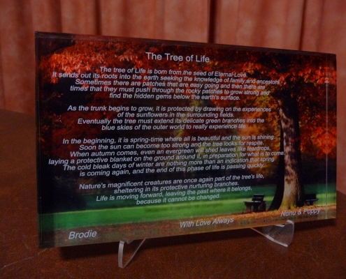 tree of life plaque e1551870414589